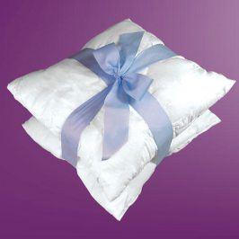 Forbyt Výplně do polštářků 100% bavlna 2 ks