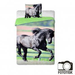 JERRY FABRICS Dětské ložní povlečení Černý kůň 140 x 200 cm, 70 x 90 cm