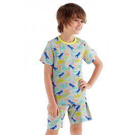 Chlapecké pyžamo Roar krátké  barevná