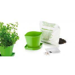 TESCOMA souprava pro pěstování bylinek SENSE, koriandr