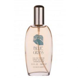 Elizabeth Arden Blue Grass 100 ml parfémovaná voda pro ženy