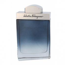 Salvatore Ferragamo Subtil Pour Homme 100 ml toaletní voda pro muže