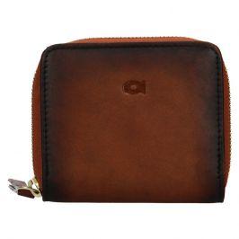 Dámská kožená peněženka Daag Brenda - koňak