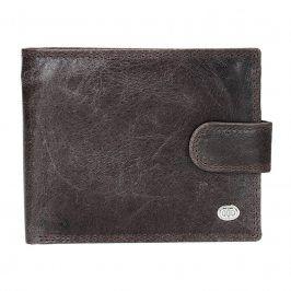 Pánská kožená peněženka DD Anekta Leo - hnědá