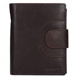 Pánská kožená peněženka Diviley Timmy - tmavě hnědá