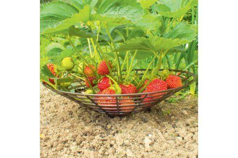 Plastové podložky pod jahody Opory pro květiny