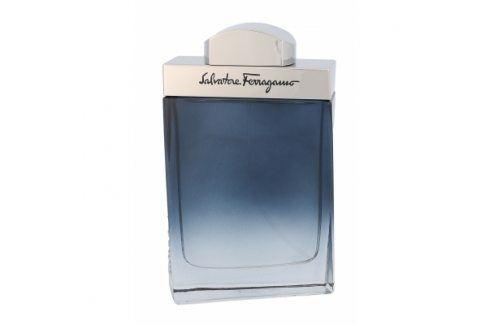 Salvatore Ferragamo Subtil Pour Homme 100 ml toaletní voda pro muže Toaletní vody