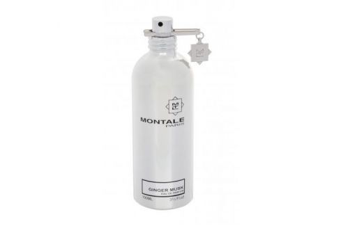 Montale Paris Ginger Musk 100 ml parfémovaná voda unisex Parfémované vody