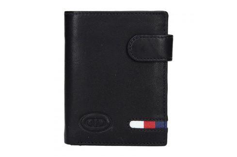 Pánská kožená peněženka DD Anekta Vít - černá Peněženky